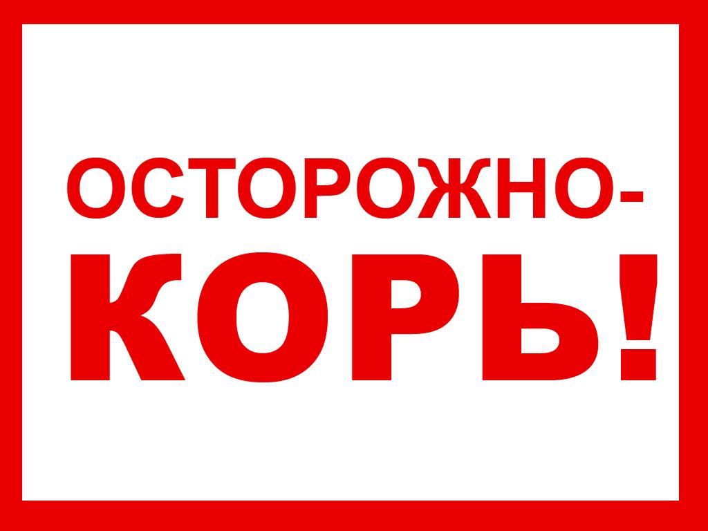 http://dsp1.moscow/wp-content/uploads/2017/09/ostorozhno-kor.jpg